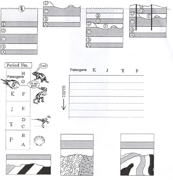 4th grade fossils worksheets for 4th grade printable worksheets guide for children and parents. Black Bedroom Furniture Sets. Home Design Ideas